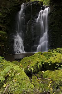 photo of More Waterfalls And Penguins In The Catlins New Zealand