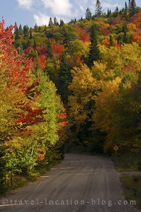 photo of Stirrings Of Fall In Parc National Du Mont Tremblant Quebec