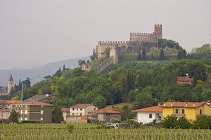 photo of Soave And Tuscany Italy