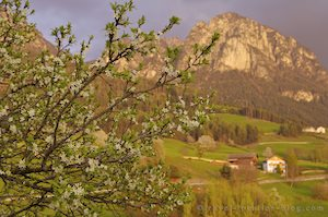 photo of Arrive Voels In South Tirol Italy