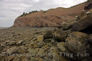 photo of Joggins Bay Of Fundy Fossil Discovery Nova Scotia